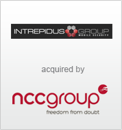 Intrepidus Group_logo